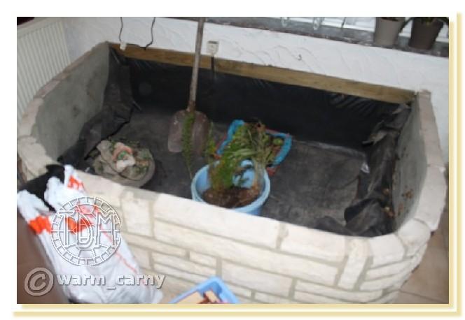 Exemples de bassins intérieurs pour aquatiques Warm0110