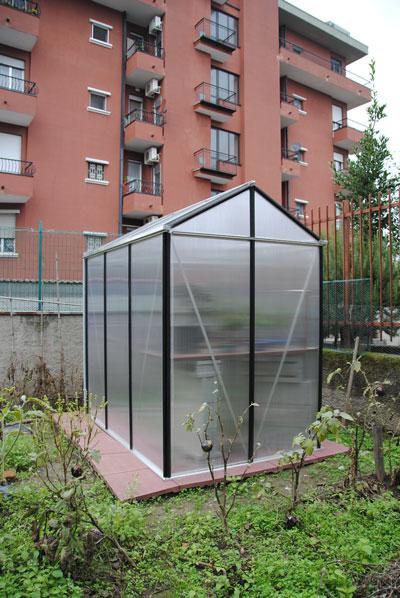 X-Garden (il giardino mutante) 20091110