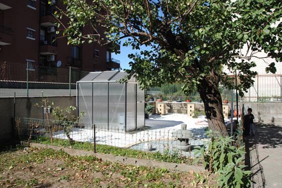 X-Garden (il giardino mutante) Dsc_0053