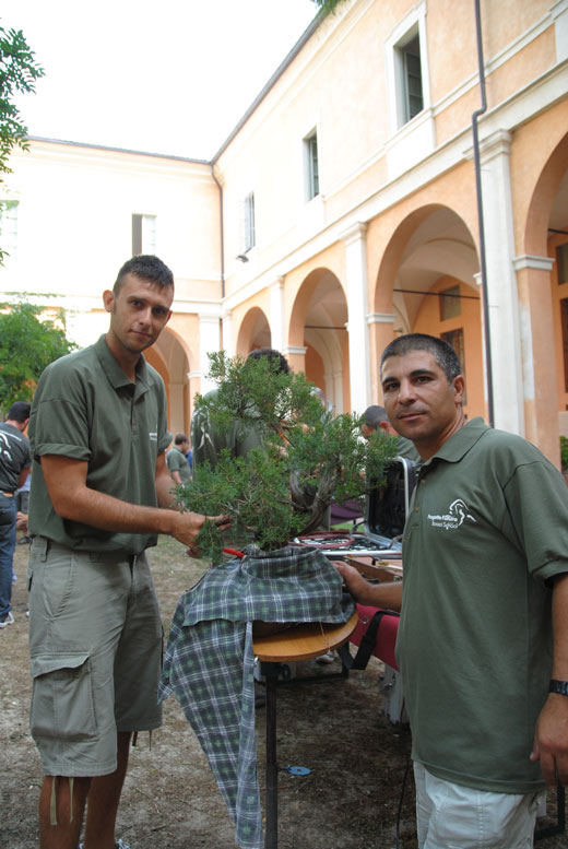 Giareda - Reggio Emilia - Pagina 3 Dsc_0517