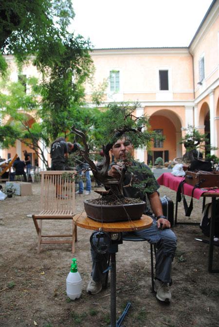 Giareda - Reggio Emilia - Pagina 3 Dsc_0617