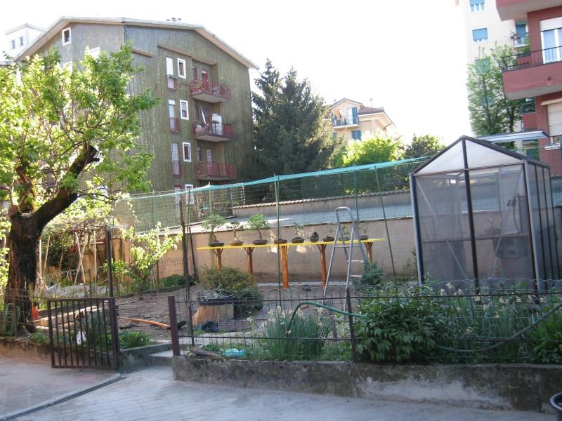 X-Garden (il giardino mutante) Img_2012
