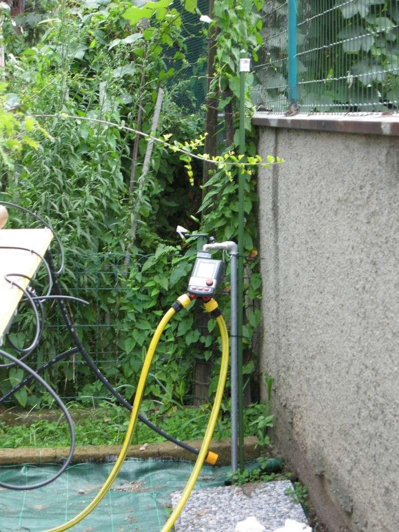 Irrigazione Img_2625