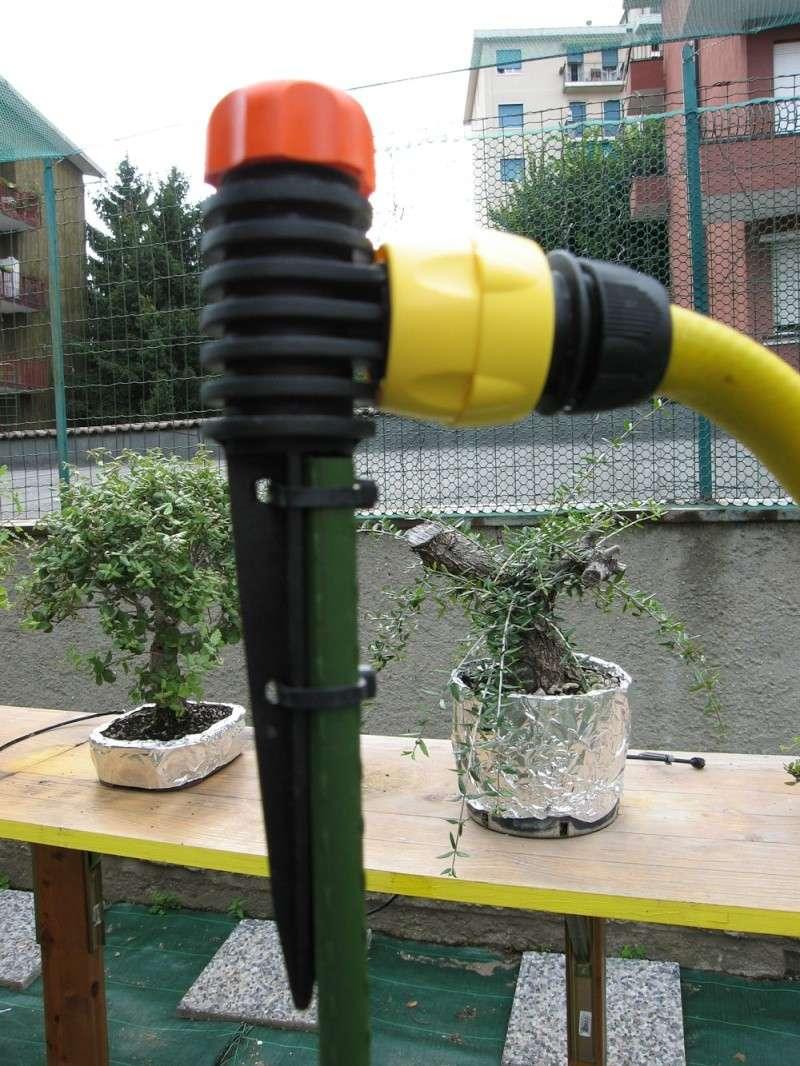 Irrigazione Img_2714