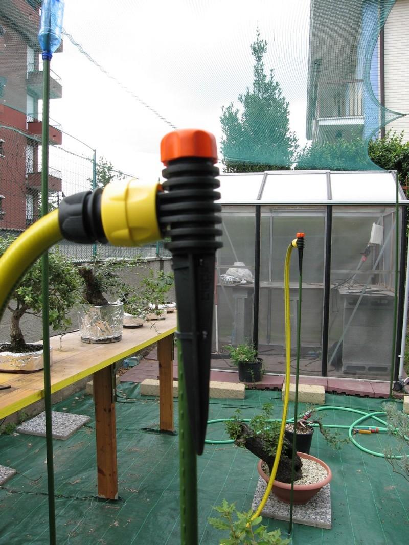 Irrigazione Img_2715