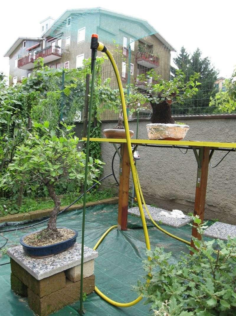 Irrigazione Img_2716