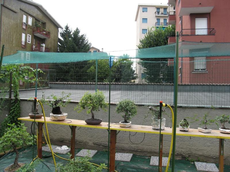 Irrigazione Img_2717