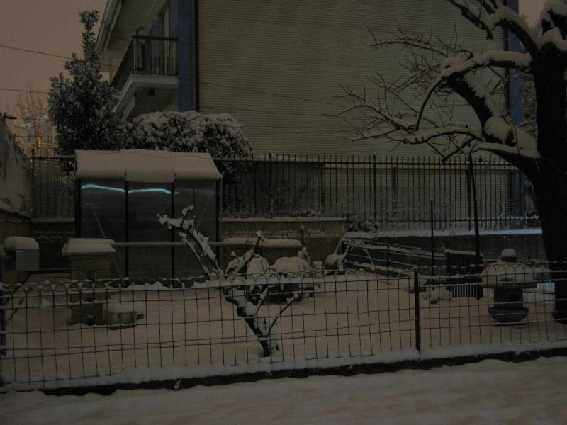 X-Garden (il giardino mutante) - Pagina 2 Img_3412