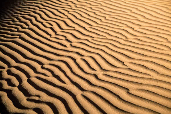 Algerian Desert (Let the pictures take) Al11110
