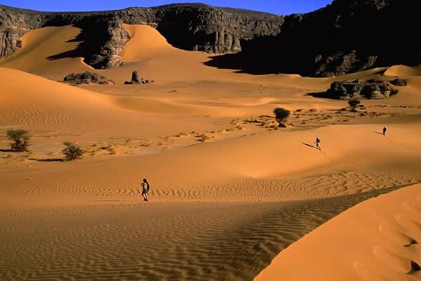 Algerian Desert (Let the pictures take) Al11610