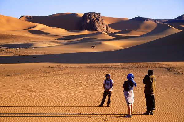 Algerian Desert (Let the pictures take) Al12410