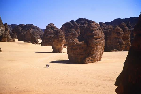 Algerian Desert (Let the pictures take) Al43610