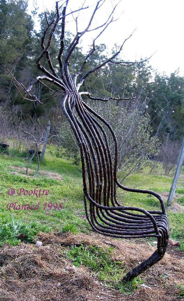 Incroyable ces arbres diriges par un homme !!!!!!!!!!!!!!!!!!!!!!!!! l'effet est étonnant!!!!!!!!!!!!!!!!!! Arbres16