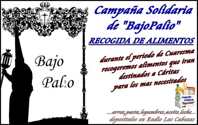 CAMPAÑA SOLIDARIA DE BAJO PALIO 2012 Campaa11