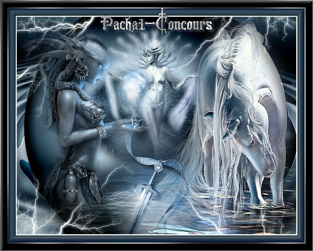 Concours-graphisme-Pacha1