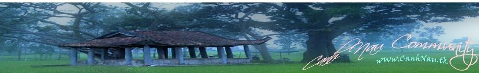 Canh Nậu Community | Diễn đàn Canh Nậu | Cổng thông tin Xã Canh Nậu Banner16