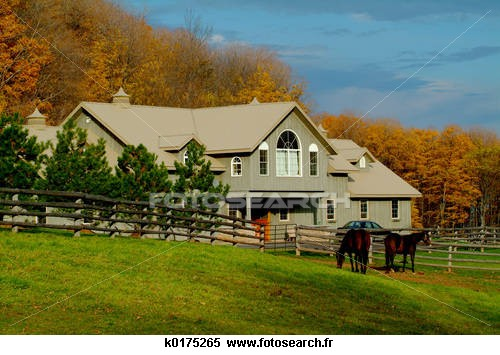 Jeudi 21Juillet Ranch10