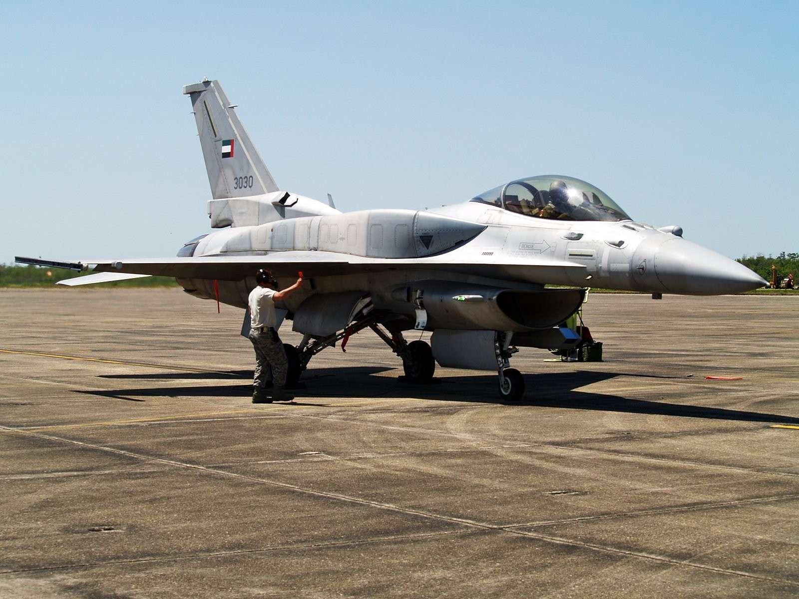Armée des Emirats Arabe Unis Img_5711