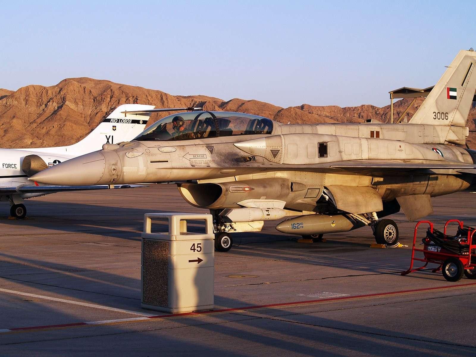 Armée des Emirats Arabe Unis Img_5714