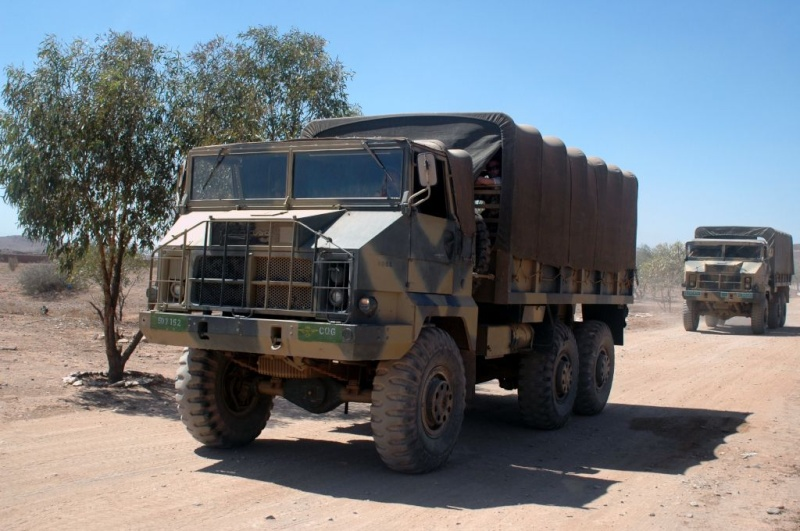 Photos - Logistique et Camions / Logistics and Trucks Pegaso10