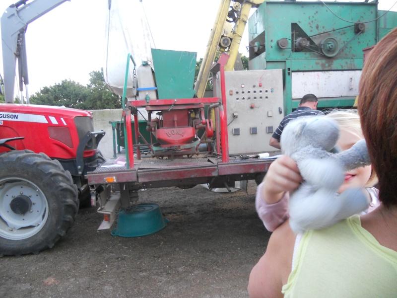 triage et traitement semence blé de ferme  00714