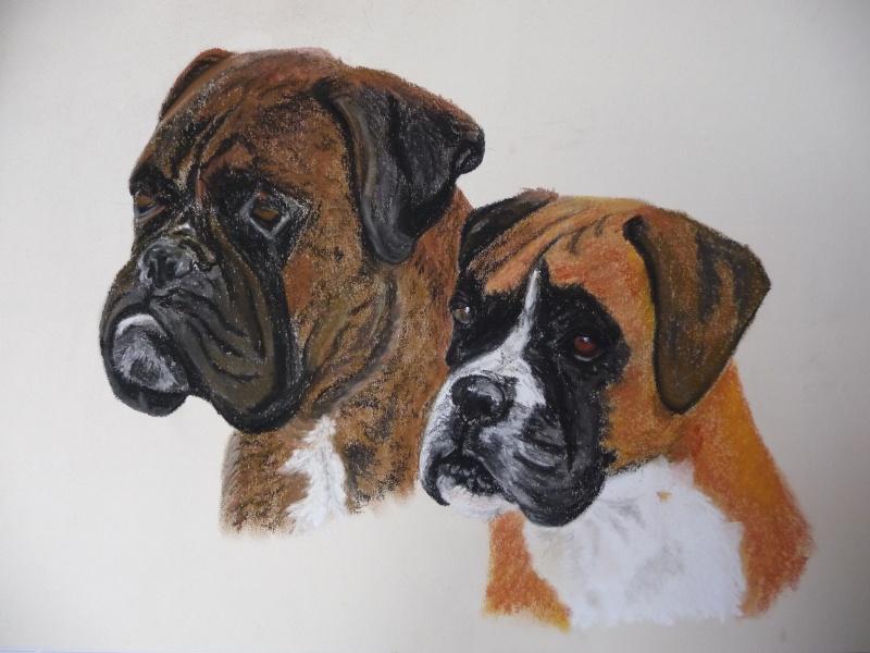 Dessins de chiens - Page 2 P1000710