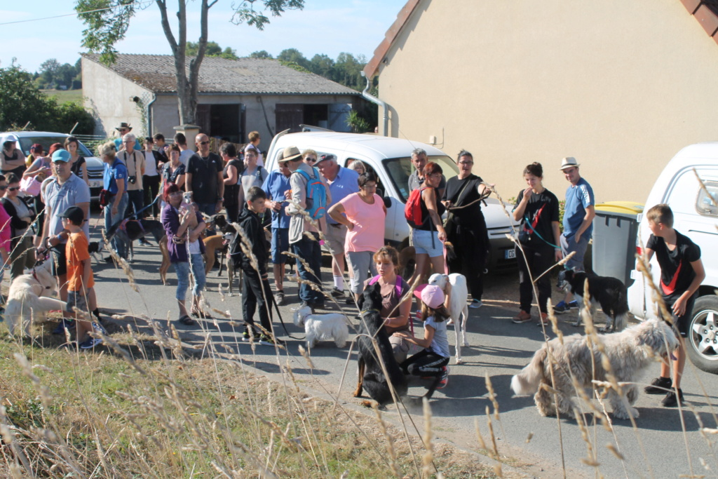 Balade Canine à Poulaines  Img_2815