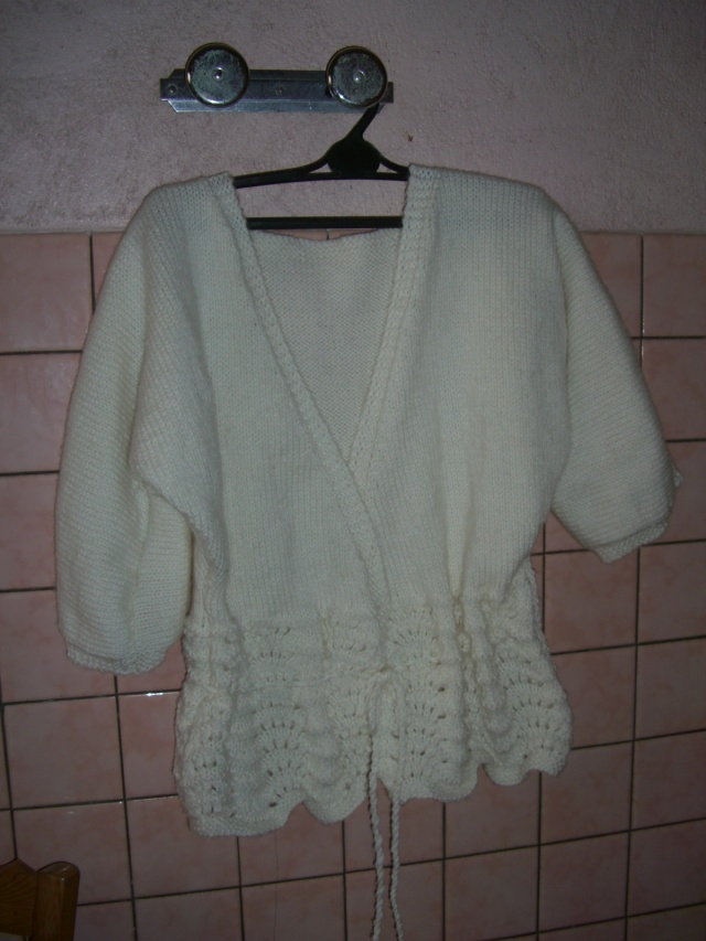 gilet au tricots Cimg0414