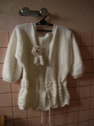 gilet au tricots Cimg0415