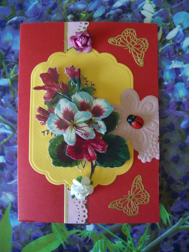 les cartes de lili Cimg1311
