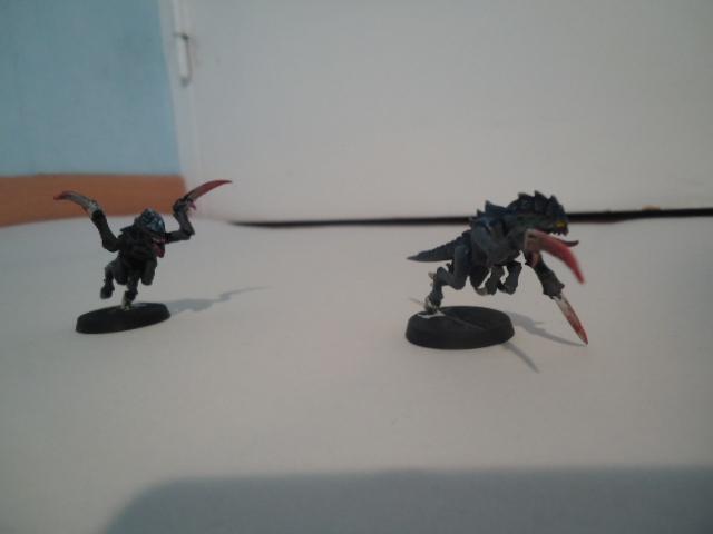 Flotte Ruche Dark Swarm Dsc06513