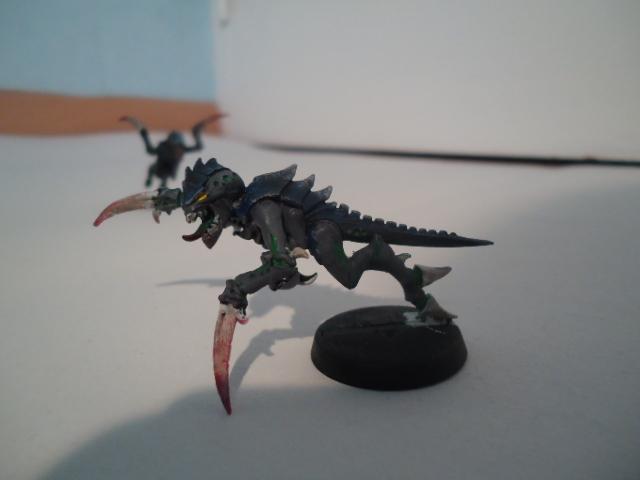 Flotte Ruche Dark Swarm Dsc06514