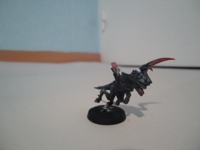 Flotte Ruche Dark Swarm Dsc06515