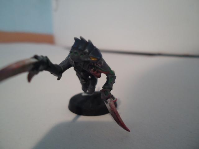 Flotte Ruche Dark Swarm Dsc06516