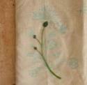 La broderie du bouquet - Page 5 Rib10