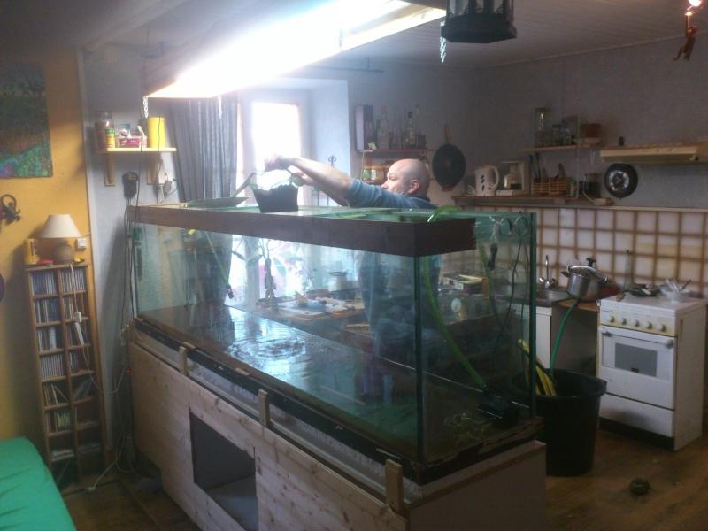 kej aquariumsssssssss!! - Page 8 Dsc_0911