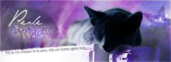 [Créas] Février 2011 Perle_10