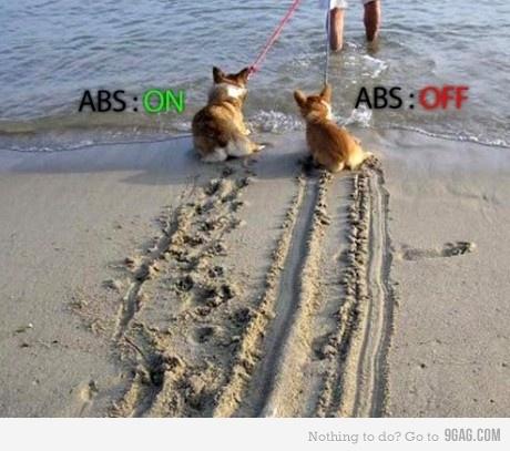 ABS Explained!! Abs_de10