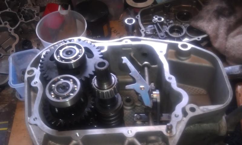 Gearbox Bummer. Rebuild/Overhaul Imag0513