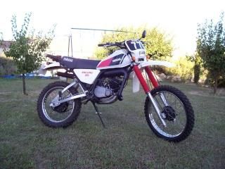 DTMX 125cc Membres / Modèles endurisés 100_4610