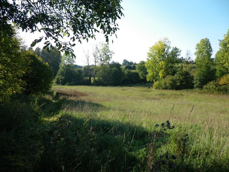 La permaculture du cagouillard Imgp0812