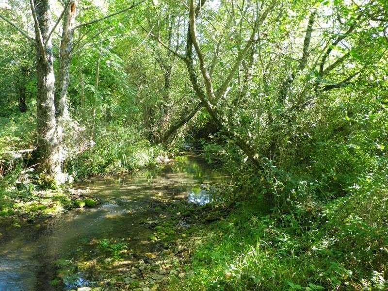 La permaculture du cagouillard Imgp0813