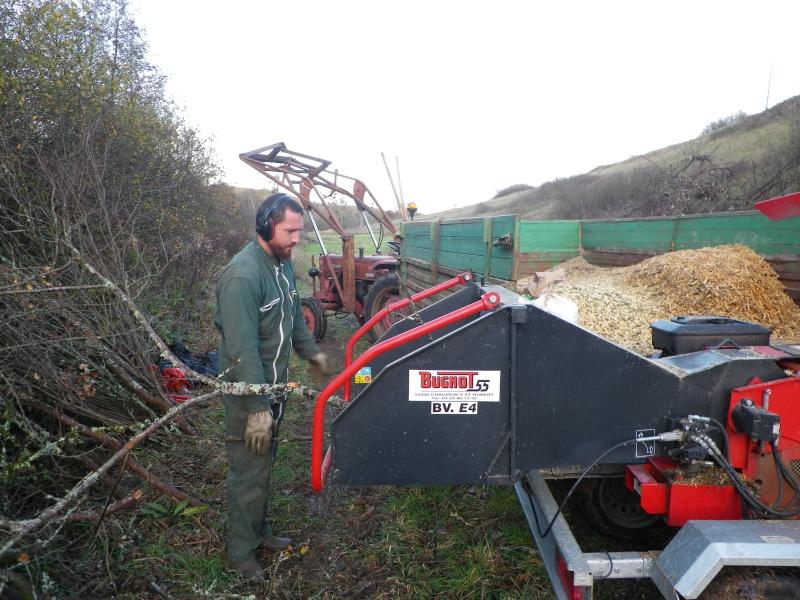 La permaculture du cagouillard Imgp1019