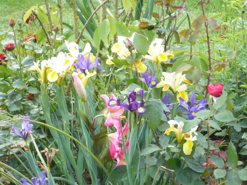 Petit tour au jardin - Petit jardin romantique tours ...
