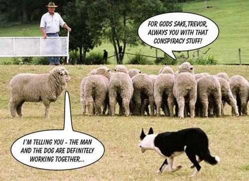 prix de l'or, de l'argent et des minières / suivi quotidien en clôture - Page 25 Sheep11