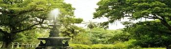 Jardim 85497610