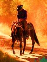 Permis de cheval