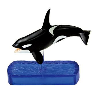 Mojo 2012 Orca/Killerwhale 06_kil10
