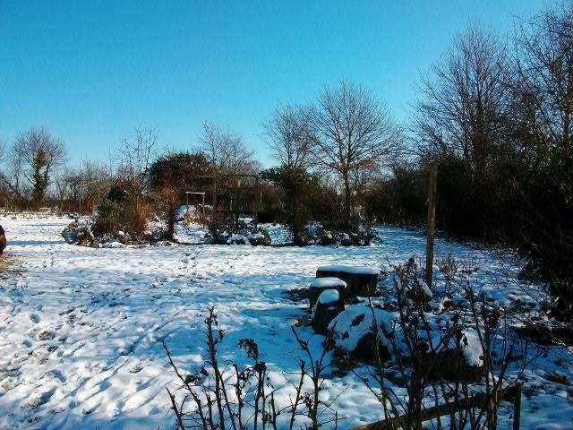 21 - Paysages d'hiver.........photos reçues !!! - Page 5 Fev-fr11