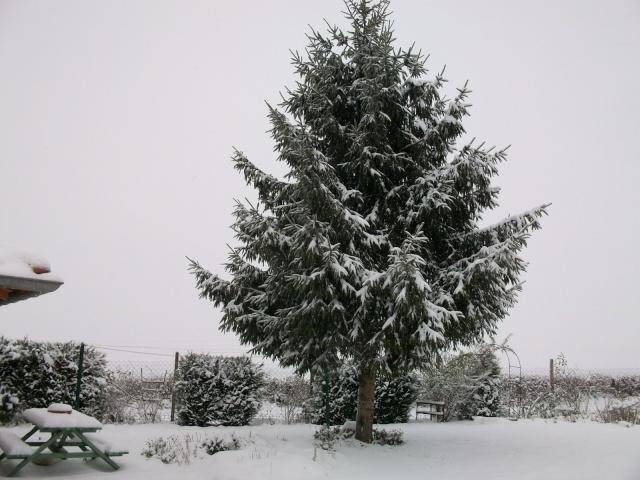21 - Paysages d'hiver.........photos reçues !!! Hiver212